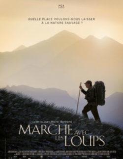 Affiche Marche avec les Loups , documentaire de Jean Michel Bertrand